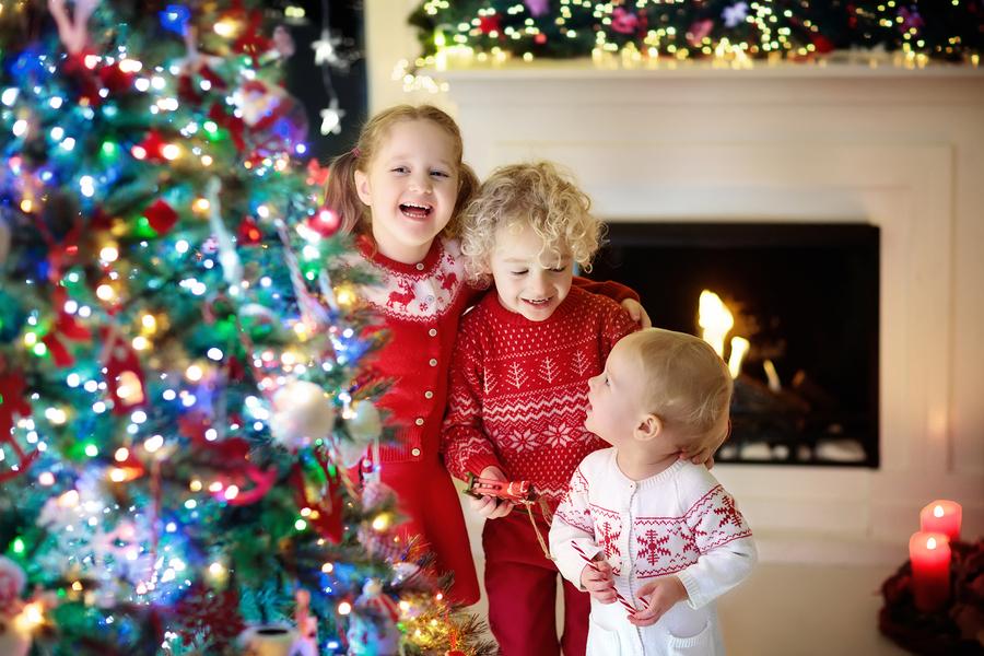 Fireplaces Ottawa, Christmas Tree, Fireplace, Christmas